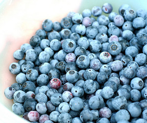 berries, healthy, and lake image