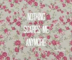 quote, lana del rey, and summertime sadness image