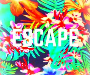 escape, flowers, and summer image