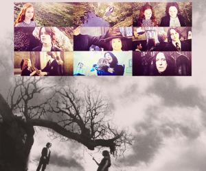 lily potter and loved forever image