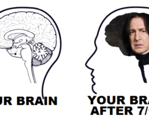 harry potter, brain, and snape image