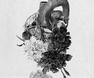 heart, flowers, and black and white image