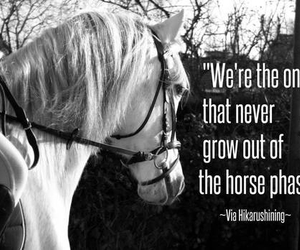 horse, beautiful, and quote image