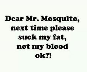blood, mosquito, and fat image