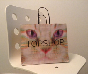 bag, cat, and eyes image