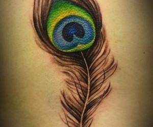 tattoo, feather, and peacock image