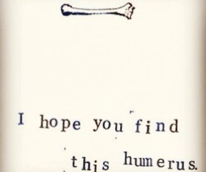 funny, smart, and humerus image