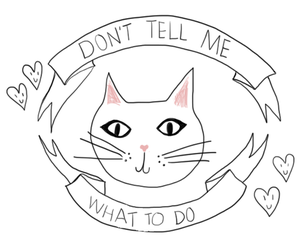 cat, tumblr, and quotes image