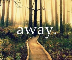away, chemin, and Dream image