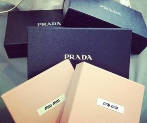 Prada, fashion, and miu miu image