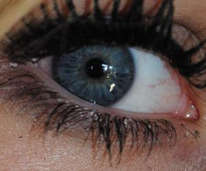 blue, color, and eye image