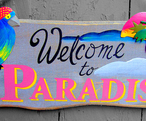 summer, paradise, and welcome to paradise image