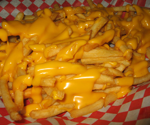 cheese and fries image