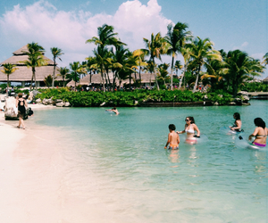 cancun, palms, and xcaret image
