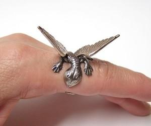 ring and dragon image