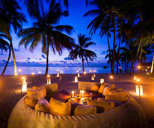 beach, romantic, and palms image