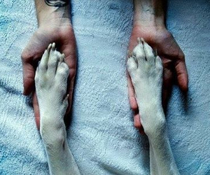 amazing, hands, and boys image