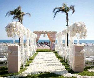 beach, summer, and wedding image