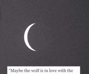 moon, night, and wolf image