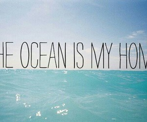 the ocean, home, and is image