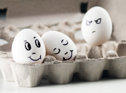 eggs and funny image