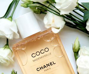 chanel, perfume, and coco image