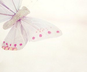 butterfly, fly, and glitter image