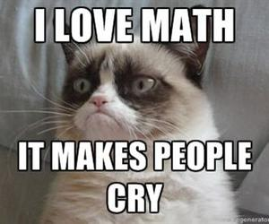 grumpy cat, math, and funny image
