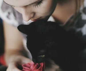 cat, girl, and rose image