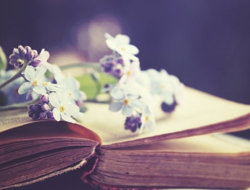 """Image result for books and flowers"""""""