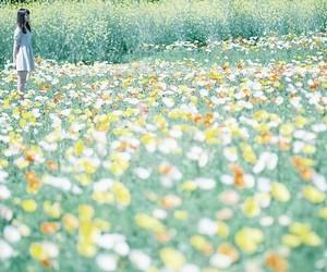 flowers, بنت, and girl image