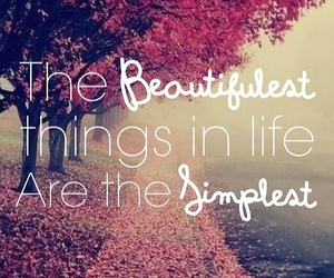 simple, life, and things image