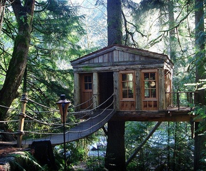 nature and tree house image