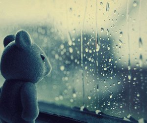 rain, sad, and bear image