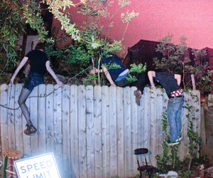fence, jumping, and friends image