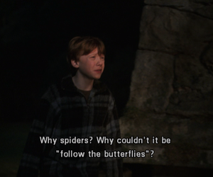 harry potter, spider, and ron image