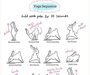 yoga, workout, and bunny image