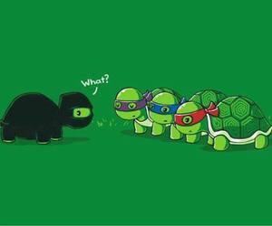 turtle, funny, and ninja image
