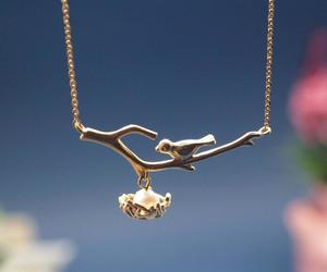 bird and necklace image