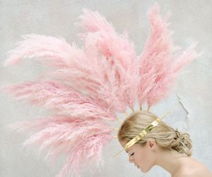Dream, feather, and pink image