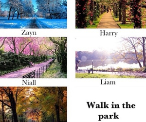 walk in the park, tumblr., and 1d image