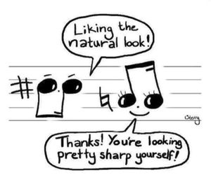 music, note, and natural image