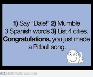 funny, lol, and pitbull image