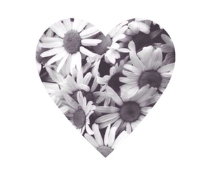 overlay, flowers, and heart image
