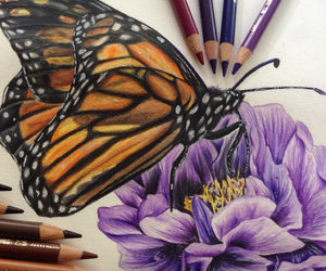art, flower, and pencils image