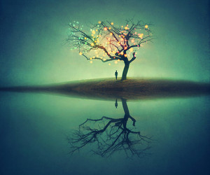 tree, light, and alone image
