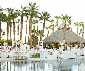 summer, palms, and wedding image