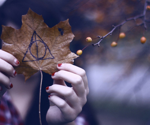 deathly hallows, harry potter, and sweet image