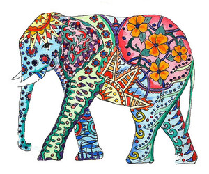 colours, elephant, and joy image