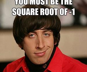cheesy math pick up lines